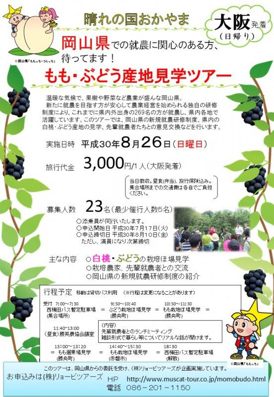 【岡山県】2018年8月26日(日)「大阪発着!もも・ぶどう産地見学ツアー」参加者を募集しています