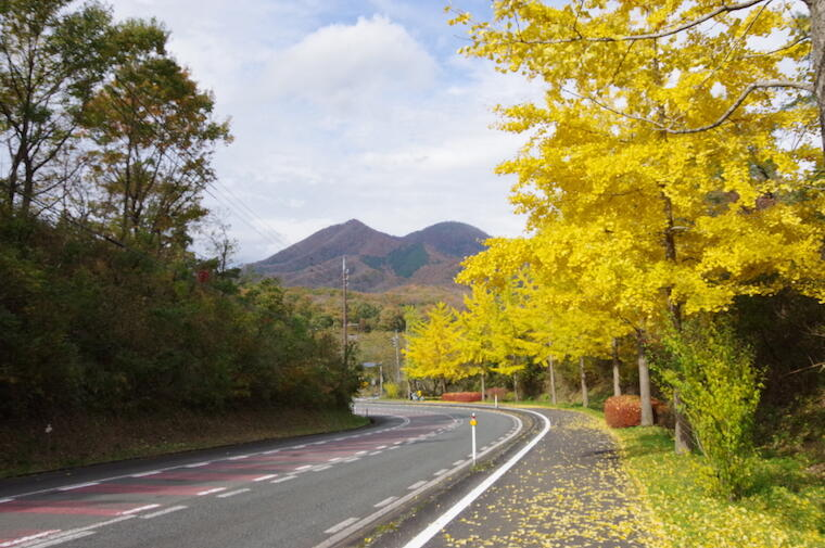 地元高校生による蒜山PR動画『秋の蒜山ハッシュタグ』