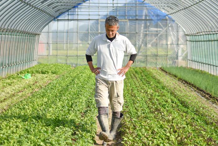 【真庭びと⑦〜大塚雅史さん〜】農業で食べていく、というイメージをもっとリアルに。 大塚農園さんの話。